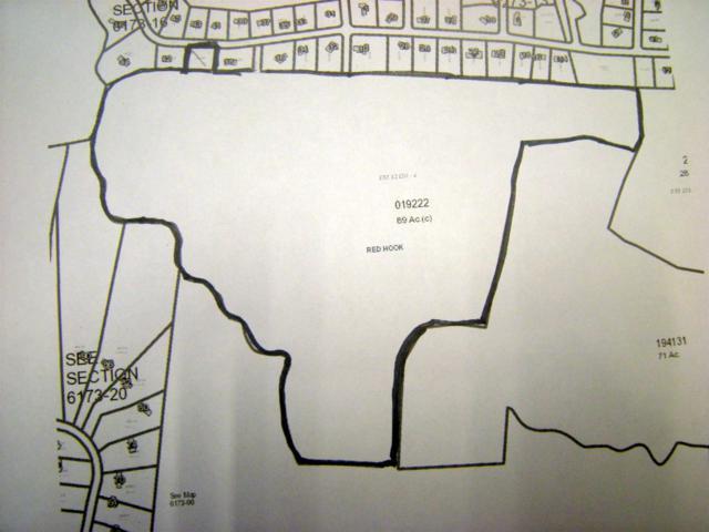 Aspinwall Rd, Red Hook, NY 12571 (MLS #356719) :: Stevens Realty Group