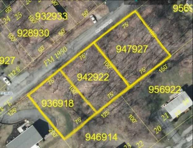 Meadow Lane, Fishkill, NY 12508 (MLS #360827) :: Stevens Realty Group