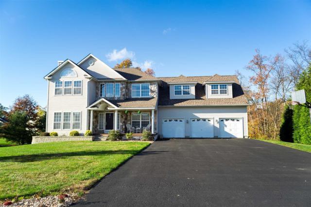 21 Barberry, Fishkill, NY 12590 (MLS #366660) :: Stevens Realty Group