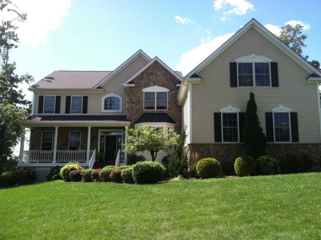 53 Sandy Pines Blvd, East Fishkill, NY 12533 (MLS #367551) :: Stevens Realty Group