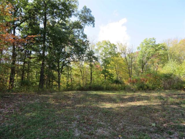 Horseshoe Path, Pawling, NY 12564 (MLS #368528) :: Stevens Realty Group