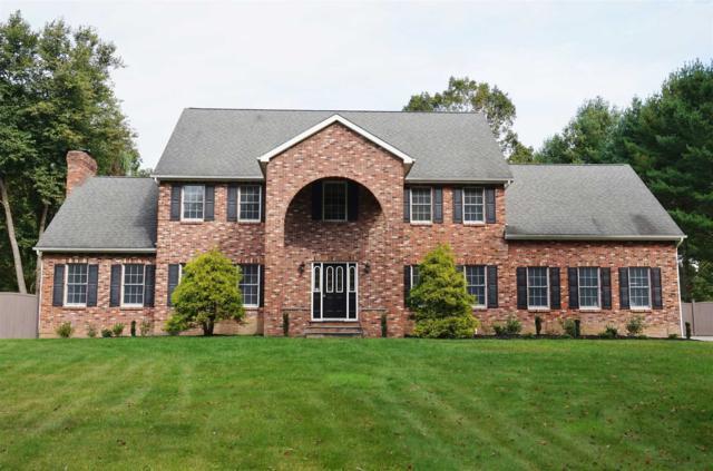 53 Athenian Ln, East Fishkill, NY 12533 (MLS #370060) :: Stevens Realty Group