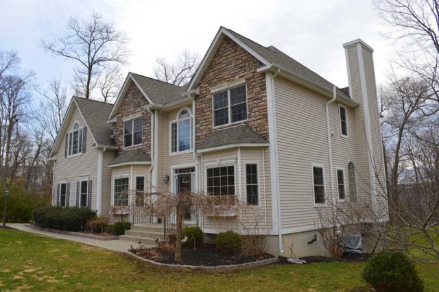 129 Shagbark Lane, East Fishkill, NY 12533 (MLS #370105) :: Stevens Realty Group