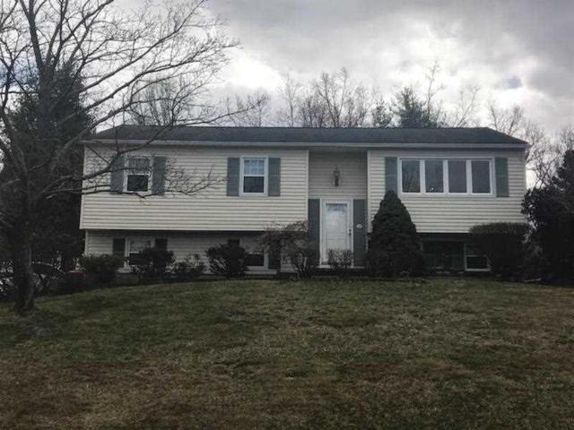 28 Macintosh Ln, Wappinger, NY 12590 (MLS #370128) :: Stevens Realty Group