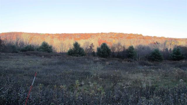 Meadow View - Lot 15 Ct, La Grange, NY 12540 (MLS #370412) :: Stevens Realty Group
