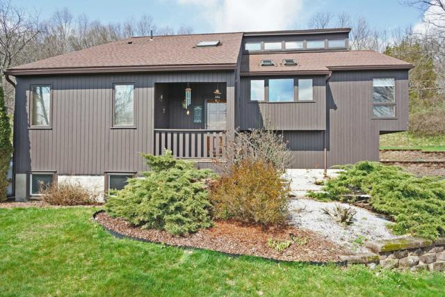 19 Oxford Rd, Pleasant Valley, NY 12569 (MLS #370824) :: Stevens Realty Group