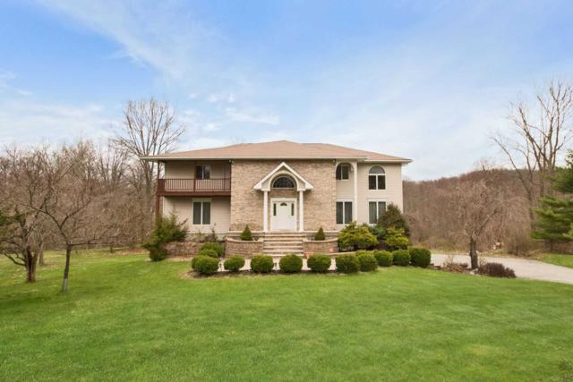 16 Darci Dr, East Fishkill, NY 12533 (MLS #370843) :: Stevens Realty Group
