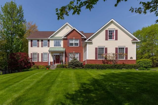 35 Sandy Pines Blvd, East Fishkill, NY 12533 (MLS #371399) :: Stevens Realty Group