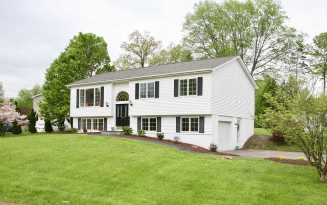 31 Holly Hill Dr, Dover, NY 12594 (MLS #371476) :: Stevens Realty Group