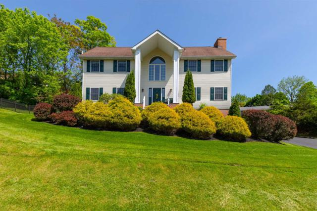 17 Pasture Ln, Poughkeepsie Twp, NY 12603 (MLS #371724) :: Stevens Realty Group