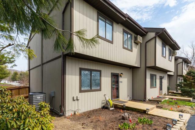 8301 N Chelsea Cove, Beekman, NY 12533 (MLS #372333) :: Stevens Realty Group