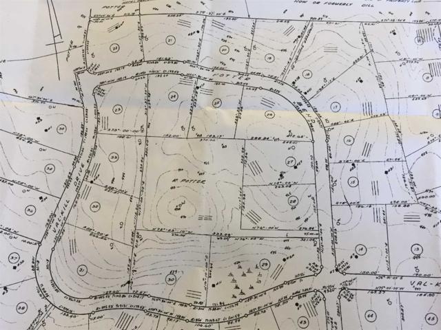 16 Potter Lot #17 Bnd, Hyde Park, NY 12538 (MLS #372819) :: Stevens Realty Group