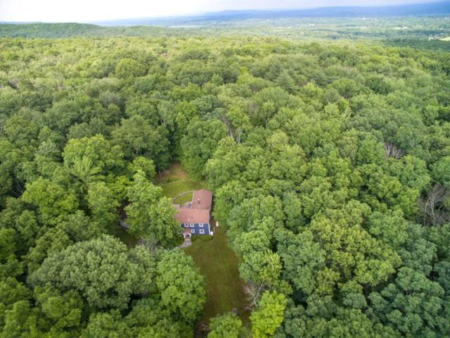 146 Chestnut Hill Road, Marbletown, NY 12484 (MLS #374178) :: Stevens Realty Group