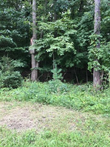 E Hillside Rd, East Fishkill, NY 12533 (MLS #374290) :: Stevens Realty Group