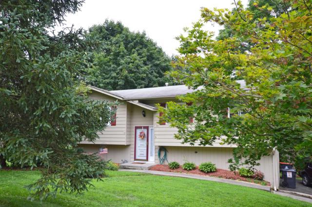 6 Blackthorn Loop, Wappinger, NY 12590 (MLS #374312) :: Stevens Realty Group