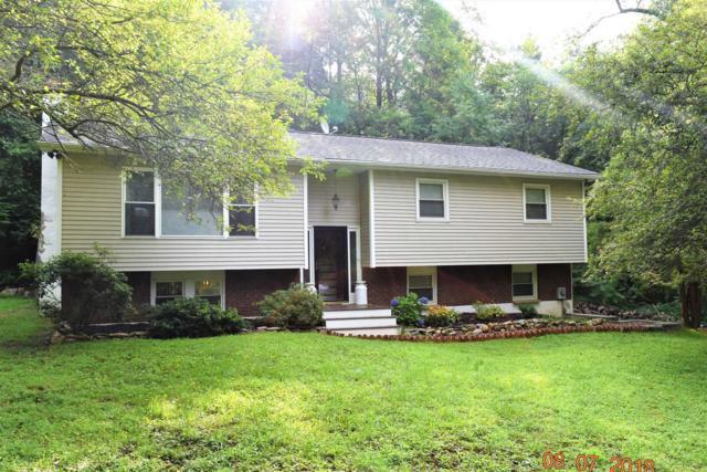 38 Kim, East Fishkill, NY 12582 (MLS #374314) :: Stevens Realty Group