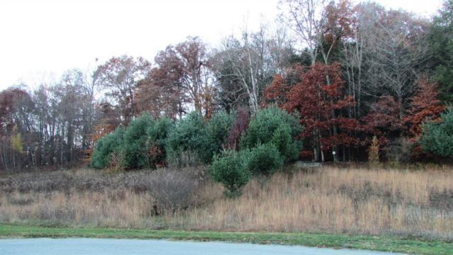 Meadow View - Lot 12 Ct, La Grange, NY 12540 (MLS #375165) :: Stevens Realty Group