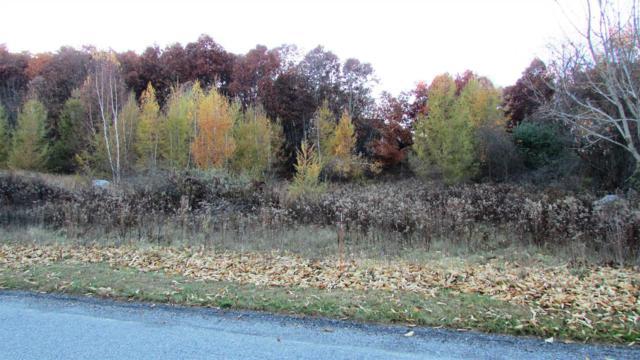 Meadow View - Lot 8 Ct, La Grange, NY 12540 (MLS #375166) :: Stevens Realty Group