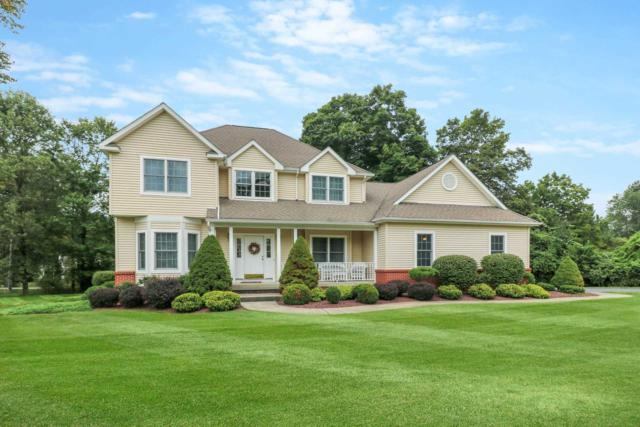 44 Coachlight Dr, Poughkeepsie Twp, NY 12603 (MLS #375290) :: Stevens Realty Group