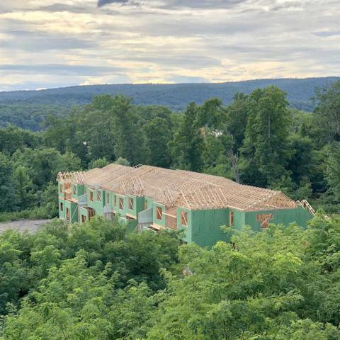 295 Hudson View Terr, Hyde Park, NY 12538 (MLS #375446) :: Stevens Realty Group