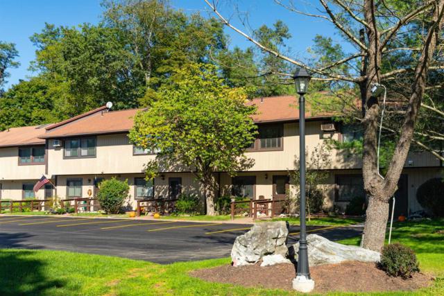 1507 Chelsea Cove S, Beekman, NY 12533 (MLS #375869) :: Stevens Realty Group