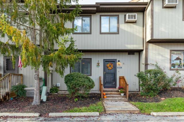 6203 Chelsea Cove N #6203, Beekman, NY 12533 (MLS #376500) :: Stevens Realty Group