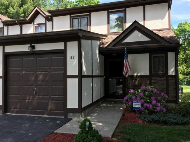 22 Amber Ct #22, Poughkeepsie Twp, NY 12603 (MLS #380052) :: Stevens Realty Group