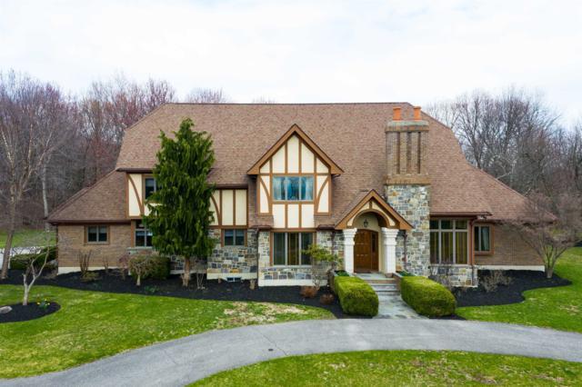 7 Taconic View Ct, La Grange, NY 12540 (MLS #380505) :: Stevens Realty Group