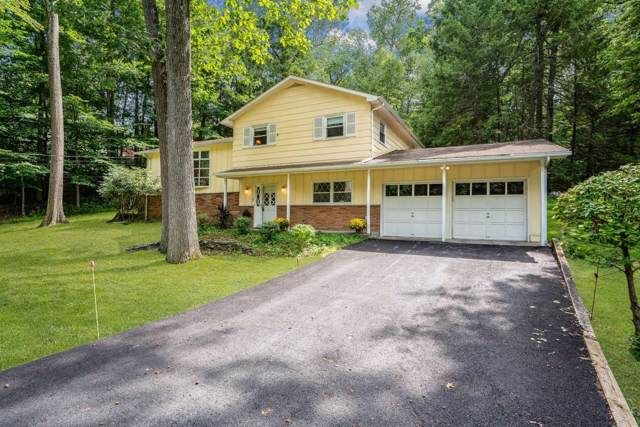 70 Hillis Ter, Poughkeepsie Twp, NY 12603 (MLS #384757) :: The Home Team