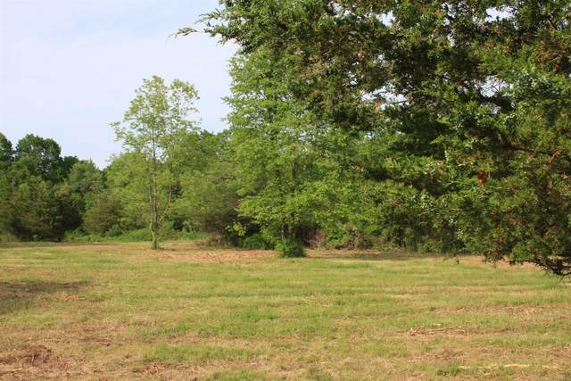 Rossway Rd, Pleasant Valley, NY 12569 (MLS #388649) :: The Home Team