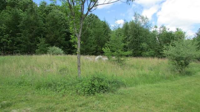 Meadow View - Lot 8 Ct, La Grange, NY 12540 (MLS #390890) :: Barbara Carter Team