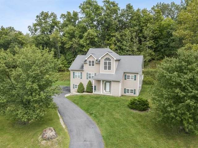 29 Red Hawk Hollow Rd, Wappinger, NY 12590 (MLS #393167) :: The Home Team