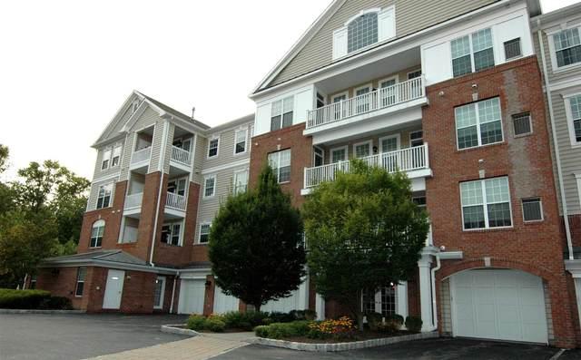 423 Regency Dr, Fishkill, NY 12524 (MLS #398885) :: Barbara Carter Team