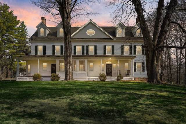 196 Willow Brook Rd, Stanford, NY 12514 (MLS #399161) :: The Home Team