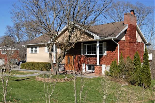41 Skyview Dr, Poughkeepsie Twp, NY 12603 (MLS #399448) :: The Home Team