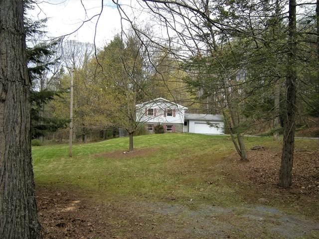 69 W Cookingham, Clinton, NY 12580 (MLS #399715) :: Barbara Carter Team
