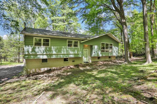 168 Flowerhill, Ulster, NY 12401 (MLS #400311) :: The Home Team