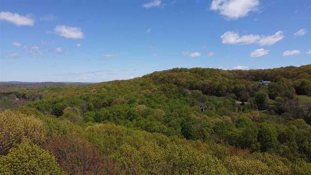 Rossway Rd, Pleasant Valley, NY 12569 (MLS #400317) :: The Home Team