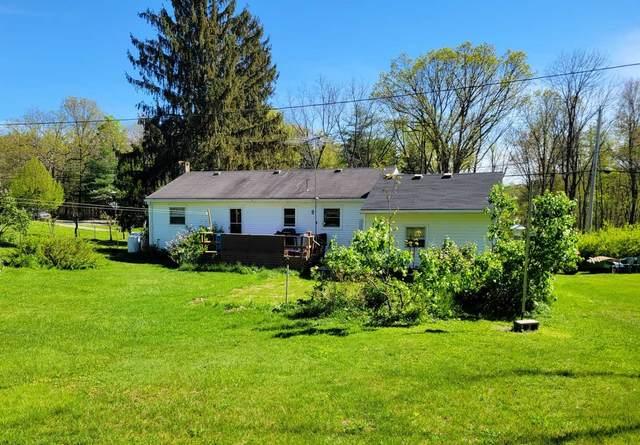 411 East Kerley Corners, Clermont, NY 12583 (MLS #400405) :: Barbara Carter Team