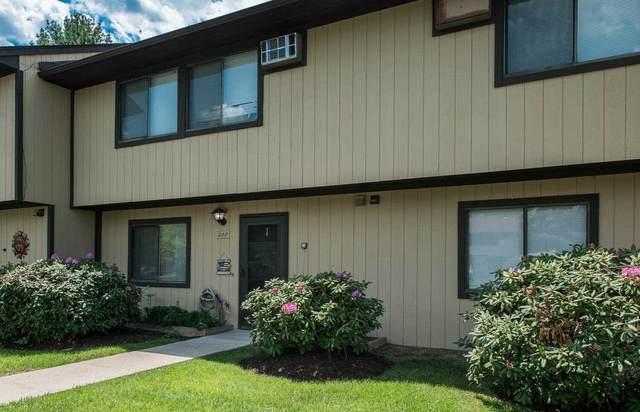 207 Chelsea Cove S, Beekman, NY 12533 (MLS #400706) :: Barbara Carter Team