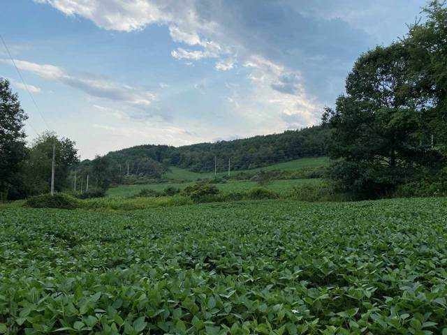 454 Bean River Road, Pine Plains, NY 12567 (MLS #400783) :: The Clement, Brooks & Safier Team