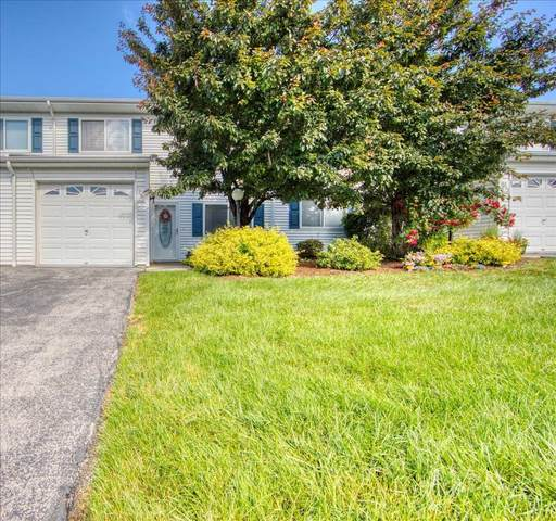 251 Tamerisk Lane, New Windsor, NY 12553 (MLS #401323) :: Barbara Carter Team