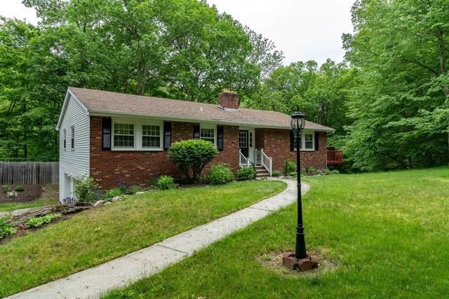 32 Halter Lane, Pleasant Valley, NY 12569 (MLS #401354) :: Barbara Carter Team