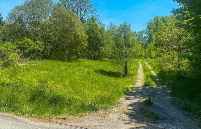 44 Beaver Road, La Grange, NY 12540 (MLS #401361) :: Barbara Carter Team