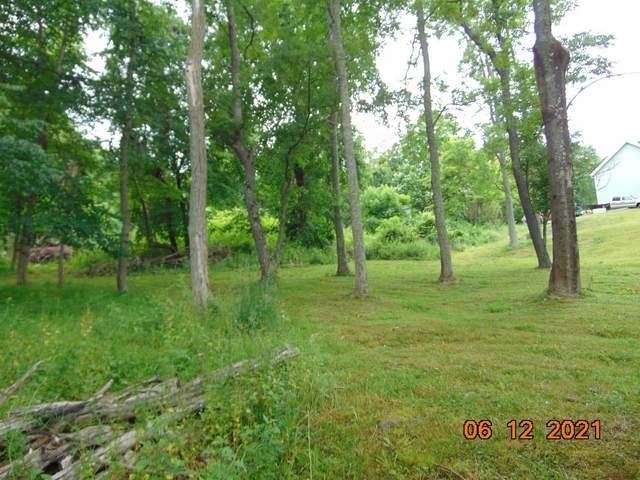 169 Sylvan Lake Rd, Beekman, NY 12533 (MLS #401516) :: The Home Team