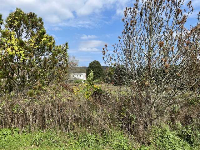 0 Spencer Lane, North East, NY 12546 (MLS #404009) :: The Home Team