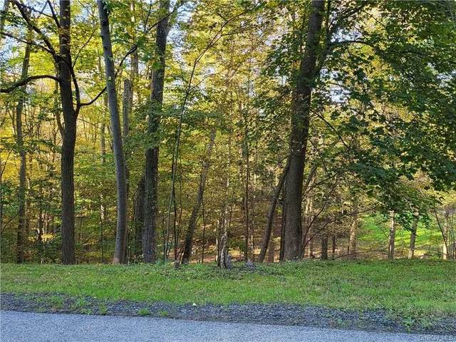 Stacy Lee Dr, Newburgh Town, NY 12550 (MLS #404447) :: The Home Team