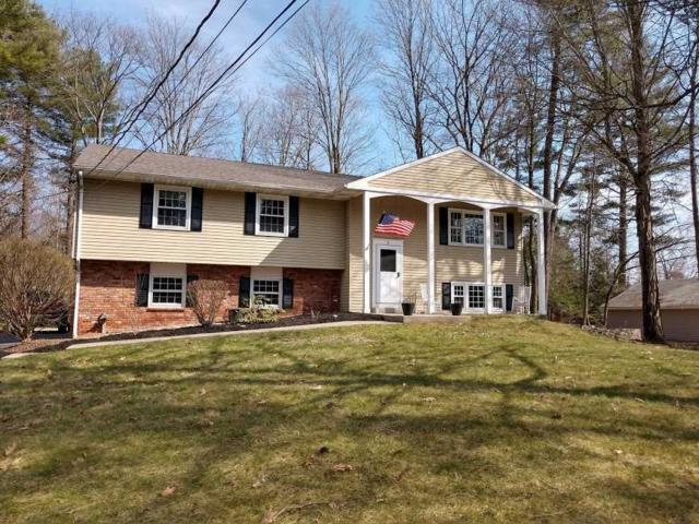 4 Hudson Dr, Hyde Park, NY 12538 (MLS #367248) :: Stevens Realty Group