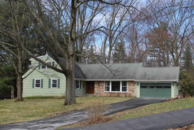 11 Carriage Hill Ln, Poughkeepsie Twp, NY 12603 (MLS #370035) :: Stevens Realty Group