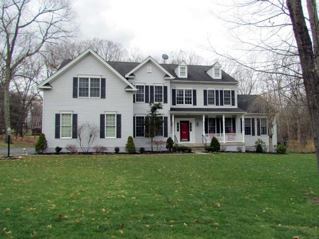162 Creekside Rd, East Fishkill, NY 12533 (MLS #370163) :: Stevens Realty Group